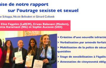 Remise du rapport sur l'outrage sexuel et sexiste